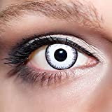 KwikSibs farbige Kontaktlinsen, weiß, Vampir, weich, inklusive Behälter, BC 8.6 mm / DIA 14.0 / -5,00 Dioptrien, 1er Pack (1 x 2 Stück)