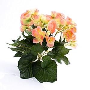 artplants.de Begonia Artificial con 27 Hojas, 9 Flores, Color melocotón, 20cm, Ø 20cm – Planta Decorativa – Flores…