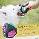 SZRWD Hundeball, Hündchen & Hundball mit Sound/Hund Kauen Ball/Gummi Spielzeug Hund/Blinkender Ball, Spielzeug für Haustiere