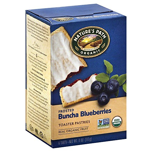 natures-path-organic-toaster-pastries-blueberry-frosted-11-oz
