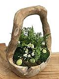 Trendy-Home Schale mit Griff Dekoschale Teakschale Obstschale Osterschale Osterkorb Natur ca.Ø 20-25 cm Dekoration Holzschale