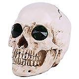 LXX Scientific Menschlicher Schädelkopf mit Totenkopf-Motiv, Medizinische Lernhilfe mit Unterkiefer.
