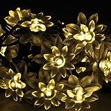 Lamker LED Solar Lichterkette Blume 6.9M 50 LED Außenlichterkette Lotosblume für Außen Innen Outdoor Garten Party Haus Hochzeit Weihnachten Terrasse Camping Hof Feier Festakt Deko - Warmweiß