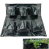 Giardinaggio 6 tasche a forma di frutta verdura semi per piante da balcone trendcell Bonsai sacchetti di impianto