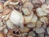 Anthrazit schmoren Conch Slices Snack 24 Unzen (680 Gramm) aus China Sea