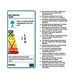 Heitronic LED Außenwandleuchte LED WANDLEUCHTE JUNA Graphit IP54 | LEDs fest verbaut 6W | 35201