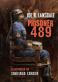 Prisoner 489 (Black Labyrinth Book 2) (English Edition) di [Lansdale, Joe]