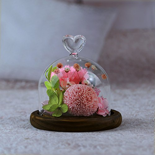 chenk Nelke Everlasting Blume Rose Mutter 's Day Valentine 's Day Geschenk Creative Love Glas Cover rose ()