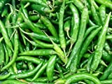 OL Seed Green Chilli Seeds Desi Variety (Pack of 50 Seeds)