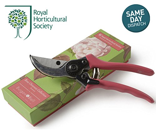 burgon-ball-rhs-garden-steel-secateurs-rosa-chinensis-collection-set-gift-boxed
