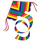 Guenther Guenther - 1159 98 x 54 cm Rainbow Single Line Kite with Sail