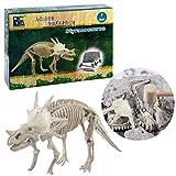 Lommer Creativo Scavo Fossile Dinosauri Giocattolo Archeologia Scavo Paleontologia Dinosauri Discovery Educativo Giocattolo per Bambini (Styracosaurus)