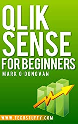 Qlik Sense for Beginners (English Edition)