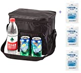 Picture Of Outdoor Cooler Bag With 3 Ice Pack Can Insulated 10-24 Hous