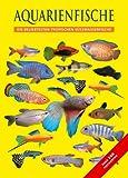 Aquarienfische: Tropische Süßwasserfische