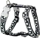 Red Dingo Designer Hundegeschirr, weiße Punkte auf Schwarz, 20mm x Halsumfang: 36-59cm / Körper 45-66cm Größe M