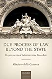 Due Process of Law Beyond the State: Requirements of Administrative Procedure