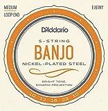 D\'Addario EJ61NY Cordes pour Banjo 10-23 Medium