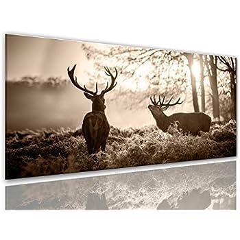 hirsch schwarz weiss motiv mit farbelementen auf leinwand im format 120x80 cm. Black Bedroom Furniture Sets. Home Design Ideas