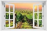 Wallario Acrylglasbild mit Fenster-Illusion: Motiv Weinberg mit untergehender Sonne - 60 x 90 cm mit Fensterrahmen in Premium-Qualität: Brillante Farben, freischwebende Optik