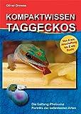 Kompaktwissen Taggeckos: Die Gattung Phelsuma. Porträts der beliebtesten Arten. Von A wie Anschaffung bis Z wie Zucht