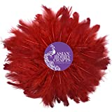 #10: Asian Hobby Crafts Natural Dyed Feathers, Red (80 Pieces)
