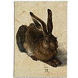 Fridolin 18906Dürer Hase Reinigungstuch für Lünette Micro Faser/Chiffon Mehrfarbig 18x 12,5x 1cm