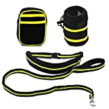 Pixnor Hands Free Leine Läufer Haustiere versenkbare Hund Hundeleine mit 2 Taille Packtaschen für laufen, Wandern, Joggen, Wandern, Radfahren (grün)