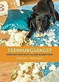 Trennungsangst: Wenn der Hund nicht alleine bleiben kann