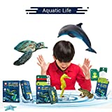 Redchimpz Aquatic Life Educational Games For Kids - Age 3-10 Years
