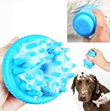 Silica Gel Wash Brush Soft And Comfortable Shower/Massage Brush Built-In Shampoo Container Blue