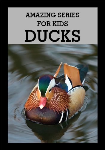 Amazing Series for Kids: Discover Ducks Picture Book