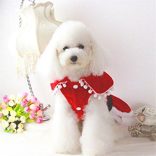 Delifur Dog Weihnachten Mrs. Claus Kleid Santa 's Sweetie Hund Kostüm Santa Coat, S, Rot/Weiß (Santa Sweetie Kostüm)