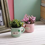 #10: Tayhaa Set of 2 Pink & Green Artificial Plants with Designer Pot