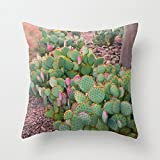 Zierkissenbezüge Prickly Pear Cactus Arizona Cushion Cover for Sofa and Couch Square Canvas Pillow Covers 45 x 45cm Decorative Throw Pillow for Chair