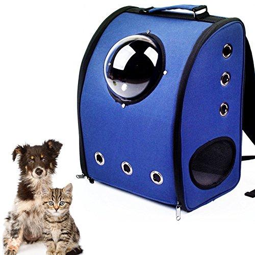 mejores transportines para gatos