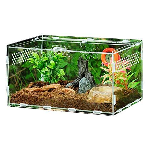 Scatola per allevamento di rettili chiari Piccolo terrario acrilico Vista completa Scatola di alimentazione per rettili per insetti Tarantole Anfibi