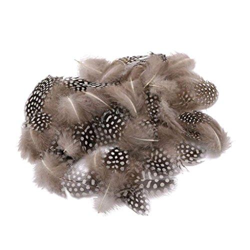 Packung mit 50 schönen Lots Färben Guinea Henne Feder Huhn Federn 5cm-10cm - ()
