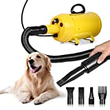 Best Dog Dryers - Amzdeal Pet Dryer, 4 Nozzles Dog Grooming Dryer Review