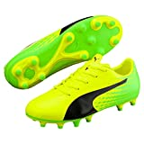 Puma Unisex-Kinder Evospeed 17.5 FG Jr Fußballschuhe, Gelb (Safety Yellow Black-Green Gecko 01), 29 EU
