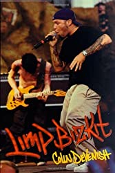 Limp Bizkit by Colin Devenish (2000-10-01)
