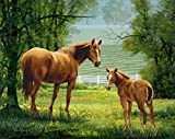 YEESAM ART Neuen 5D Diamant Painting Kit–Zwei Pferde Tiere 25* 30–DIY Kristall Diamant Strass Gemälde eingefügt Malen Nach Zahlen Kits Kreuzstich Stickerei