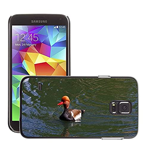 Just Phone Cover Hard plastica indietro Case Custodie Cover pelle protettiva Per // M00139732 Pochard Red Headed Pochard Canard // Samsung Galaxy S5 S V SV i9600 (Not Fits S5 ACTIVE)