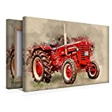 Calvendo Leinwand McCormick 45x30cm, Special-Edition Wandbild, Bild auf Keilrahmen, Fertigbild auf hochwertigem Textil, Leinwanddruck, kein Poster