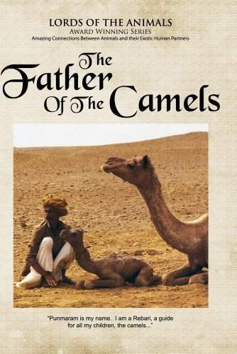 The Father of Camels (Bank Camel)