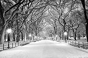 azutura Central Park New York Wall Mural Black & White Photo Wallpaper Winter Tree Decor available in 8 Sizes Large Digital