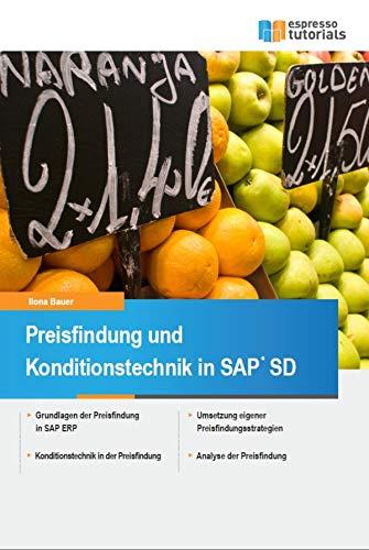 Sd-system (Preisfindung und Konditionstechnik in SAP SD)