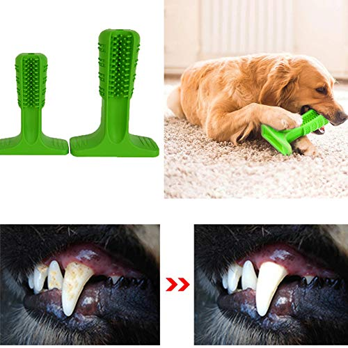 Blue-idea Hundezahnbürste , Hundebürstenstift Zahnreinigung Effektive Haustiere Mundpflege für Welpen (L)