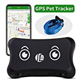 DAGPS GPS Pet Tracker & Dog Activity Monitor per Android/iPhone Impermeabile Regolabile Collare per Cani di Tutte Le Taglie