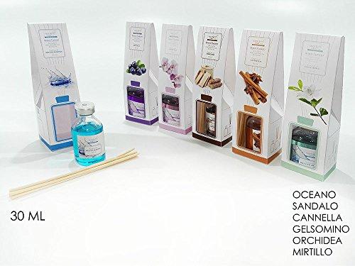 Girm® ge699600- cannella - profumatore per ambiente liquido profumo cannella 30ml. con astine di legno diffondi profumo